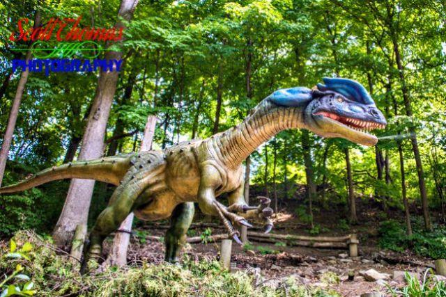 Dilophosaurus Spitting