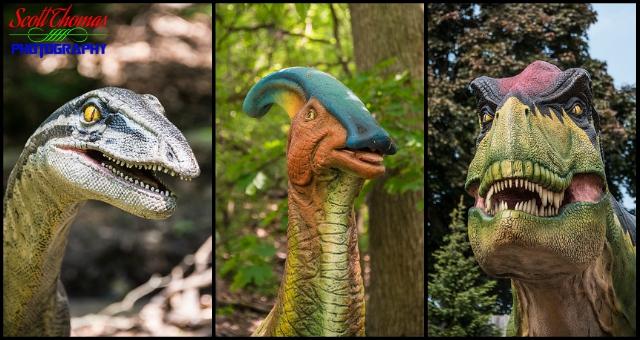 Dinosaur Faces