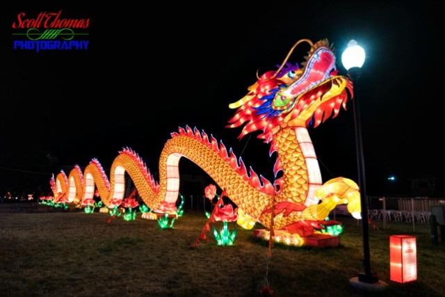 New York State Chinese Lantern Festival Dragon
