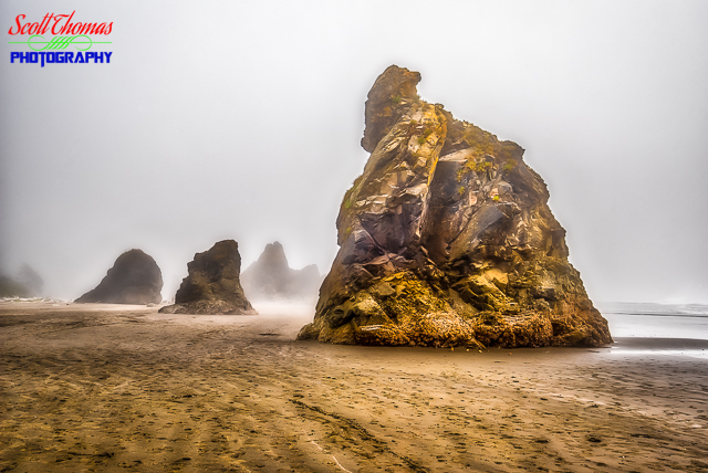 Ruby Beach Sea Stacks in HDR
