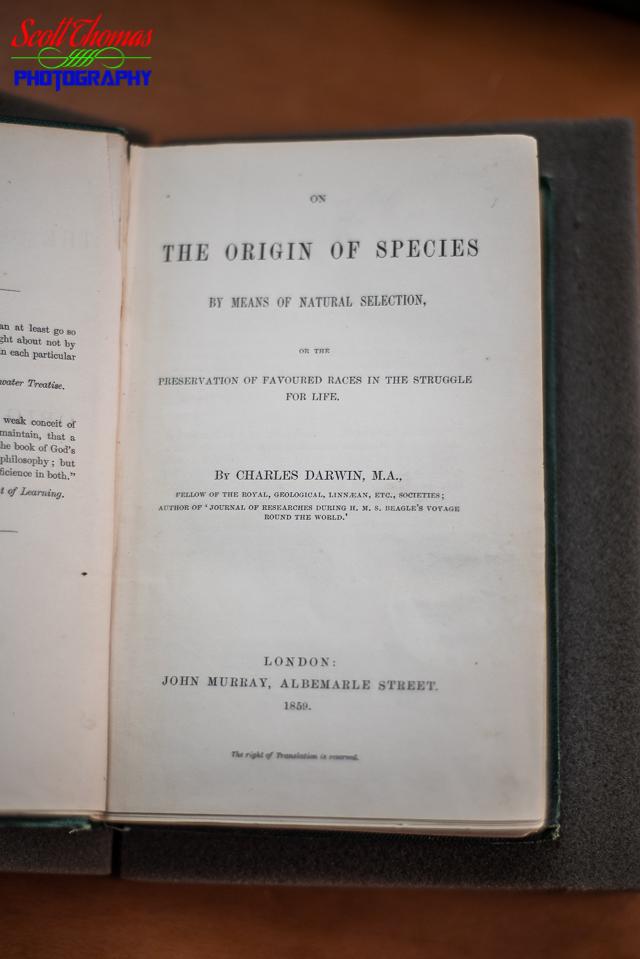 View 407: On The Origin of Species | Views Infinitum