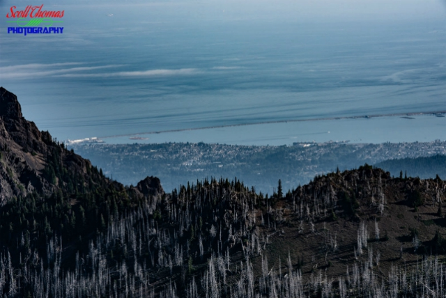 Port Angeles from Hurricane Hill