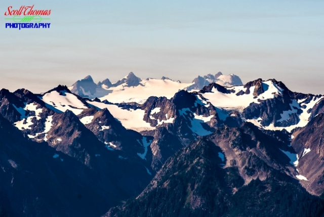 Mount Olympus from Hurricane Hill