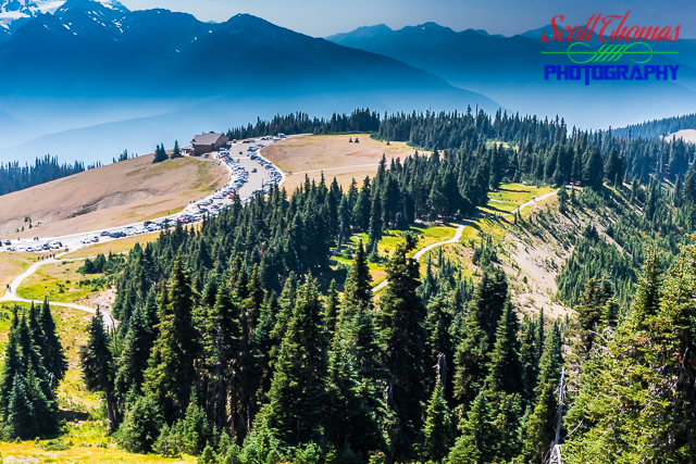 Hurricane Ridge Visitor Center and Trails