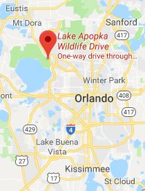 Lake Apopka Wildlife Drive Location