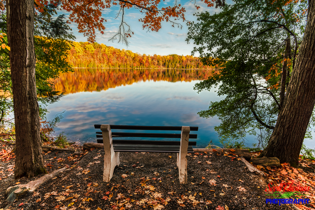 Bench on Green Lake